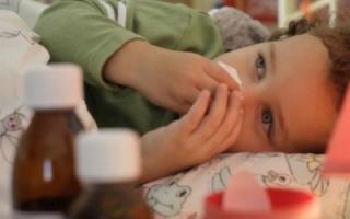 vremya-grippa-i-prostud